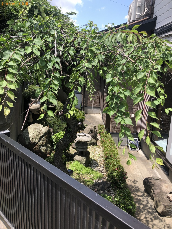 【北九州市小倉北区】庭の手入れ・草刈りのご依頼 お客様の声