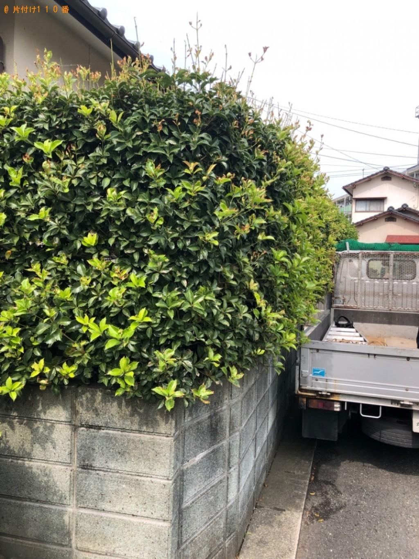 【北九州市小倉南区】庭木の剪定ご依頼 お客様の声