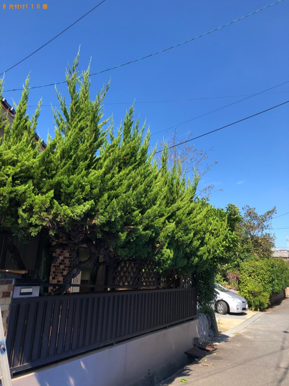 【北九州市八幡西区】庭木の剪定ご依頼 お客様の声