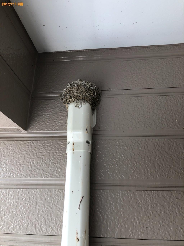 【北九州市八幡西区】ツバメの巣の撤去と清掃ご依頼 お客様の声